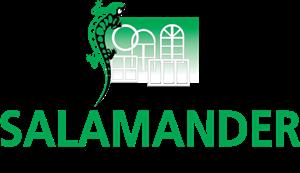 пластиковые окна Salamander